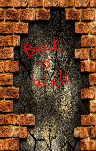 Wise Mind Publications – Ras Irice – Back O Wall – Back Cover