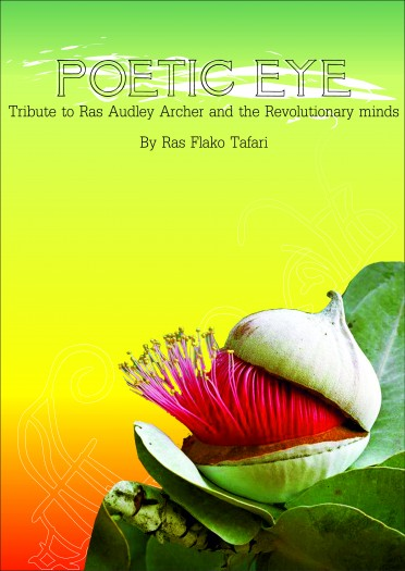 wisemind_publications_-_poetic_eye_-_front_cover