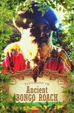 AncientBongoRoachFront