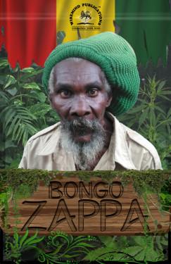 BongoZappaFrontCover